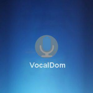 VocalDom Logo