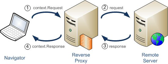 Varnish Reverse Proxy